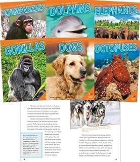 Smartest Animals (Set)