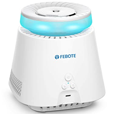 FEBOTE 4 in 1 Small HEPA Air Purifiers for Home with Humidifying Function, Portable USB Desktop Air Purifier with Negative Ions, Nightlight for Small Room Office Car Camping Travel, AC-420, White (Not for CA)