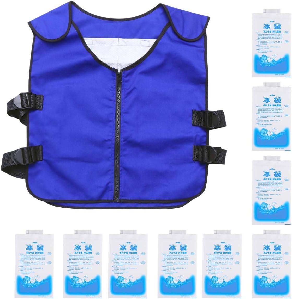 BESPORTBLE 21pcs Cooling Vest 誕生日/お祝い Ice 出群 Summer Jacket Set