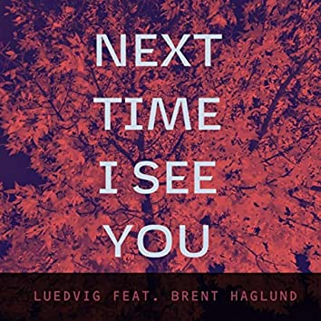 Next Time I See You (feat. Brent Haglund)