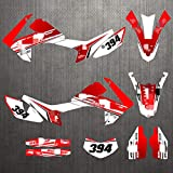 Tatumyin CH0331A14 Customized 3M Motorcycle Decals Stickers Graphics Graphic Decal Kit for Honda CRF250L 2012-2020 HNSZF (Color : 5)