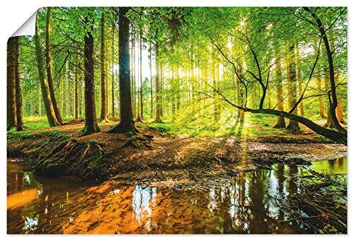 Artland Poster Kunstdruck Wandposter Bild ohne Rahmen 120x80 cm Wald Natur Landschaft Bäume Bach Sonne Frühling T9IO