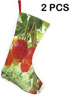 Christmas Stockings 2Pcs Set Bonners Ferry Nursery Decoration for Xmas Holiday Party