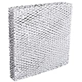"BestAir A10 Humidifier Replacement Metal/Clay Waterpad Filter, 10"" x 10"" x 2"","