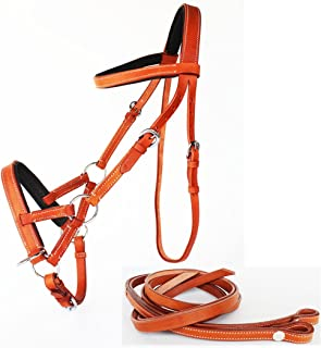 PRORIDER English Horse Leather BITLESS Bridle SIDEPULL Halter REINS TAN 7701TN