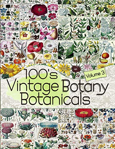 100s Vintage Botany Botanicals Volume 3 (Floral Ephemera Series)