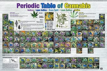 Studio B Periodic Table of Cannabis Pot Reference Chart Cool Wall Decor Art Print Poster 36x24