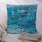 Fundas decorativas para cojines para sofá cama, sofá, crucero azul, glaciar de Alaska, hielo, fusión de agua, hielo, icebergs, naturaleza, bahía, calma, claro, cambio climático, suave funda de cojín