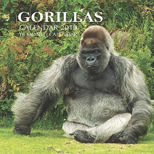Gorillas Calendar 2019: 16 Month Calendar