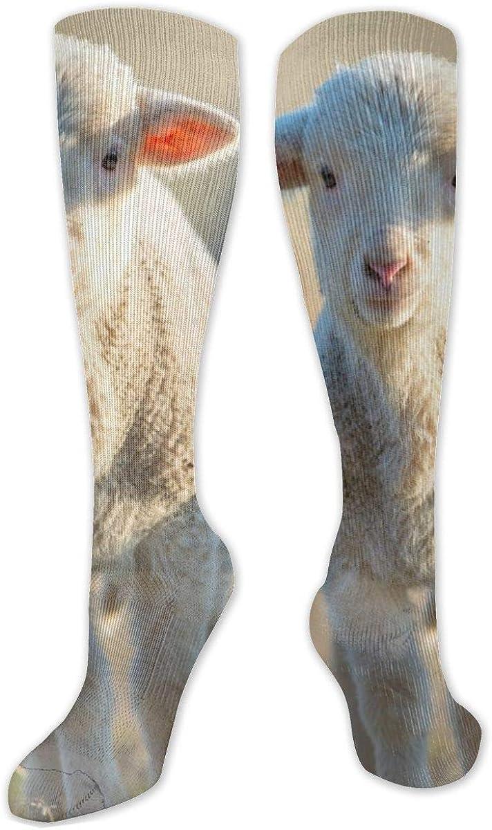 White Little Sheep Knee High Socks Leg Warmer Dresses Long Boot Stockings For Womens Cosplay Daily Wear