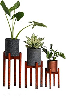 SF Brown Planter Set with Pot by Pyramidion