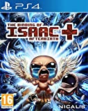 The Binding Of Isaac - Afterbirth
