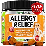 FurroLandia Allergy Relief Immune Supplement for Dogs - Seasonal & Food Allergies - Skin Itch, Hot Spots and More - Supports Digestive & Skin Health - Made in USA - 170 Soft Treats (Chicken)
