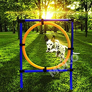 Zoic Pet Dogs Outdoor Games Agility Exercise Training Equipment Jump Hoop Obedience Show Training for Doggie