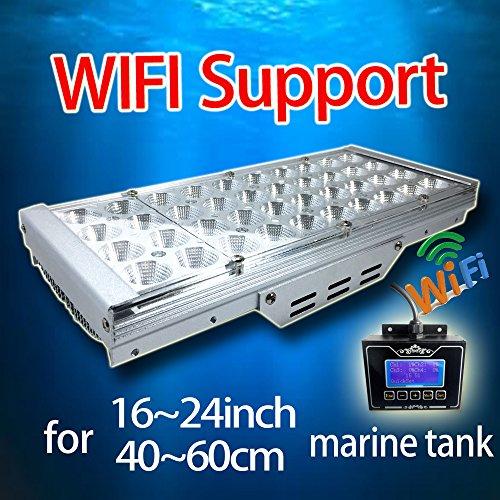 DSunY Smart Reef Light