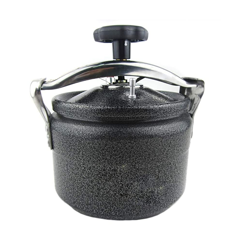 Pressure Cookers Explosion-proof Portable Pressure Cooker Mini Outdoor High Altitude High Pressure Cooker Home Pressure Cooker 3L/4L/5L Explosion Proof (Size : 5L)