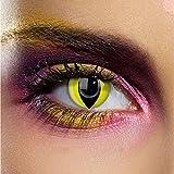 Funky Vision - Lentillas de contacto (3 meses, sin graduación, 1 unidad), color amarillo