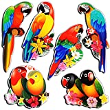 Parrot Magnets - Colorful Magnets Girly for Compact Refrigerator Whiteboard Locker - Animal Parrot Fridge Magnets for Adult Kids