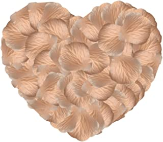 Neo LOONS 1000 Pcs Artificial Silk Rose Petals Decoration Wedding Party Color Light Peach