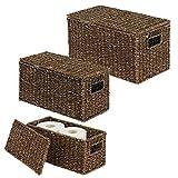mDesign Juego de 3 cestas organizadoras – Elegantes cestas de almacenaje de junco marino con tapa – Cajas de almacenaje con asas, ideales para guardar ropa, juguetes o revistas – marrón