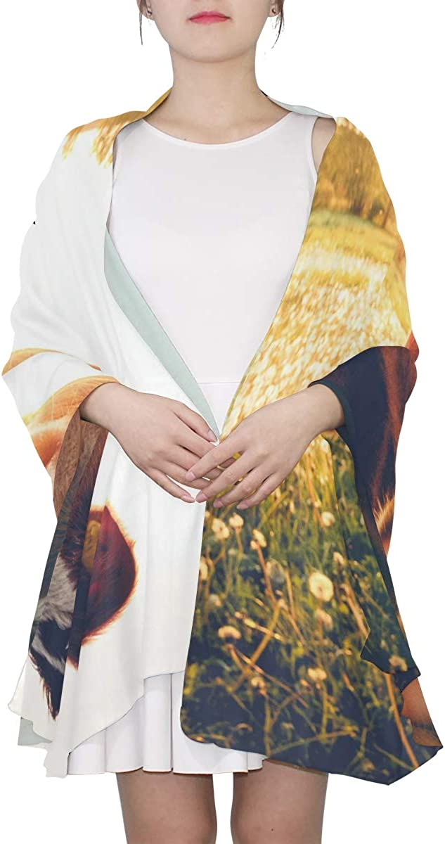 Thin Scarf Lightweight Happy Single Cow On A Meadow During Sunset In Summ Womens Fashion Scarf Lightweight Mens Scarf Lightweight Print Scarves Spring Scarf Lightweight Summer Scarfs For Women Lightw