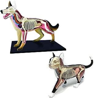4D Vision Dog & 4D Vision Cat Toy Veterinarian Kit Bundle