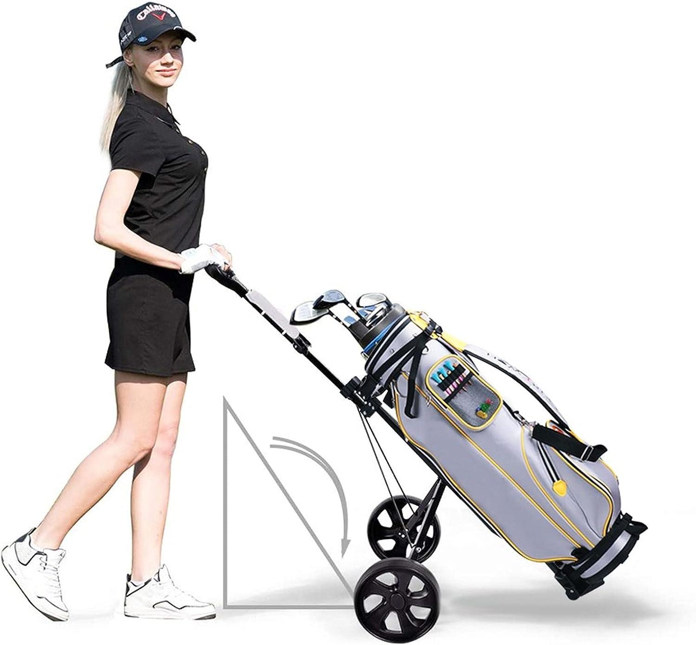 Decsix Golf Pull Push Cart, Foot Operated Brake Golf Carts 2 Whe