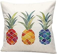 Katara Decor - Colorful Pineapple Throw Pillow Case Cover 18x18 Inches