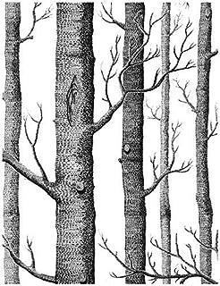 Birch Tree Peel and Stick Wallpaper - Backsplash Peel Stick or Wall Paper, Prepasted Wall Paper or Adhesive Shelf Paper - ...
