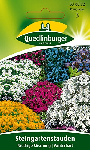 Steingarten Stauden winterharte Mischung 103245 Saatgut Blumen Samen Sämereien