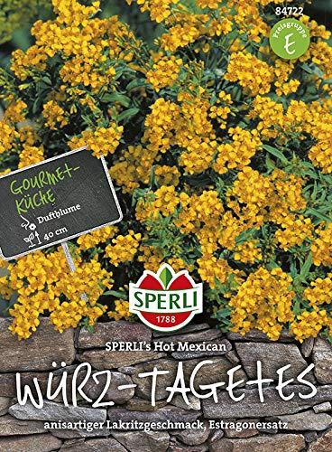 Sperli Blumensamen Würz-Tagetes Hot Mexican, grün