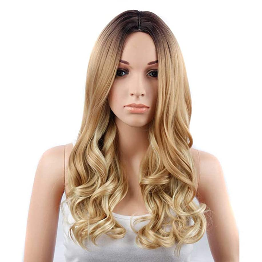 鋸歯状ヒステリック除外するBOBIDYEE 人工毛ファッションブロンドグラデーションロングカーリーナチュラルウェーブウィッグ女性女の子デイリードレスパーティーウィッグ (Color : ブラウン)