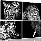 Feeby Frames, Cuadro en lienzo - 4 partes - Cuadro impresión, Cuadro decoración, Canvas, 40x40 cm, LEÓN, TIGRE, ELEFANTE, ANIMALES, ÁFRICA, SAFARI, BLANCO Y NEGRO