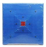 ACS MAT Acupressure Reflexology Magnetic Pyramidal Therapy Energy Pain Relief Power Foot Health Deluxe Mats