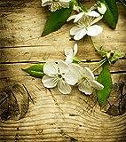 1art1 Blüten - Weiße Apfelblüten Auf Holz Fototapete Poster-Tapete 202 x 180 cm