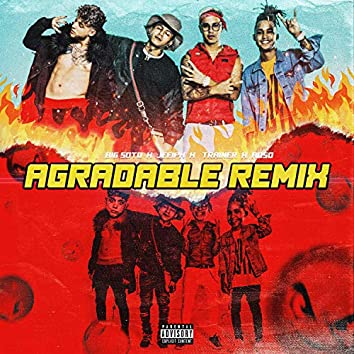 Agradable (feat. Trainer)