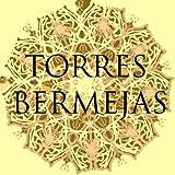 Cuadro Flamenco Torres Bermejas