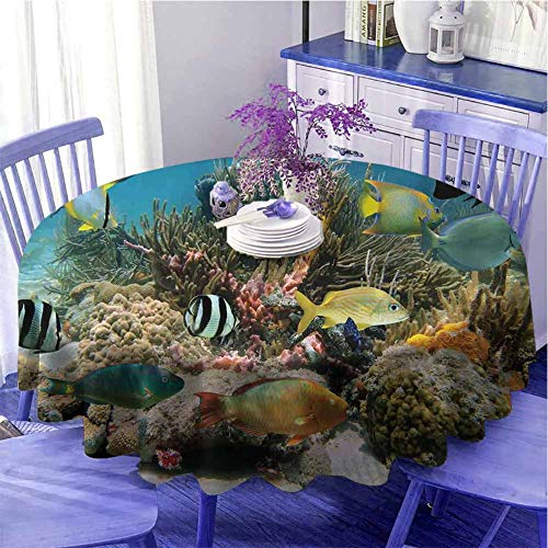 Océano Camping mantel redondo colorido Colonia de Coral en
