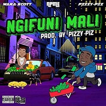 Ngifuni Mali (feat. Wara Scott)