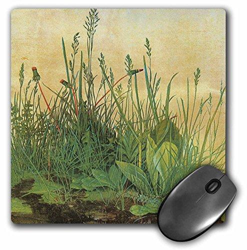 3drose LLC 20,3x 20,3x 0,6cm Maus Pad, die Große Stück Turf von Albrecht Dürer Wild (MP 126457_ 1)