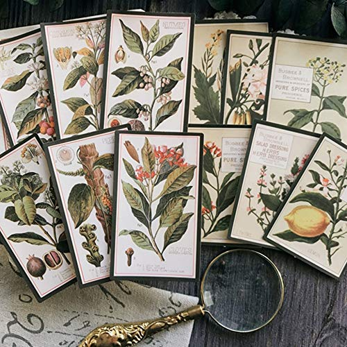 Dagboek Vintage Planten Engels Letters Sticker Diy Craft Scrapbooking Album Junk Journal Planner Decoratieve Stickers 8 stks/pack