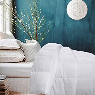 Besfor White Hotel Collection Luxury Down Alternative Quilted Queen Comforter - All Season -Plush Microfiber Fill - Machine Washable -Stand Alone Comforter (White, Queen)