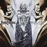 Songtexte von Hate Eternal - Phoenix Amongst the Ashes