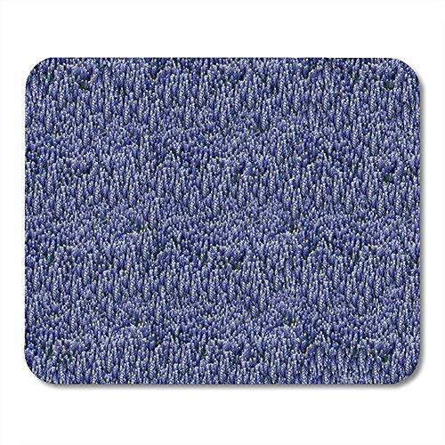 Glad Office Pad, gestikte randen Gaming Mousemat, Antislip Rubber Muis Pads, Blauw Bloemen Texas Bluebonnets Badmat Wildflowers Land Laptop Office Mouse Mat, Computer Muizen Pad,30X25CM