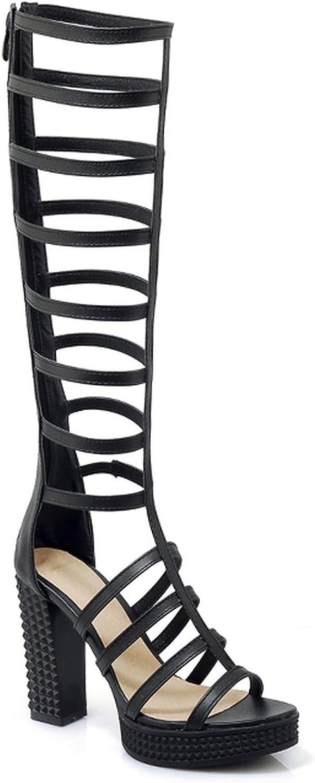 Summer Women Gladiator Sandals Open Toe Footwear Zipper Platform Sandals shoes High Heels Female shoes