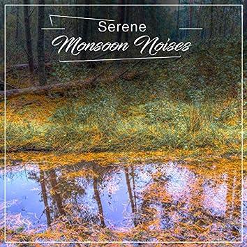 #16 Serene Monsoon Noises for Relaxation