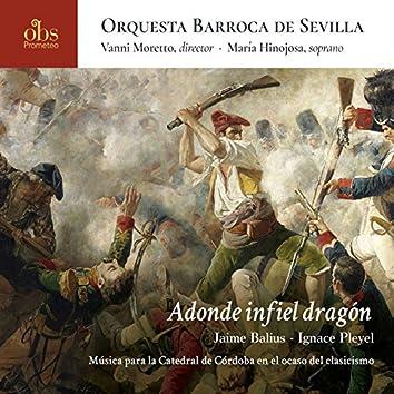 Adonde infiel dragón. Jaime Balius - Ignace Pleyel. Música para la Catedral de Córdoba en el ocaso del clasicismo