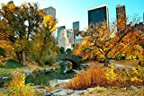 Jigsaw Puzzle Central Park Lake Fall Skyscraper New York 1000-Pieces 75cmX50cm(29.5inX19.7in)