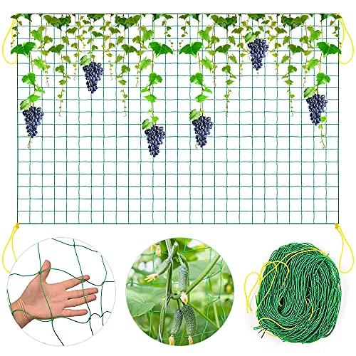 O-Kinee Premium Ranknetz mit großer Maschenweite für besonders ertragreiche Ernte von Gurken, Tomaten und Anderen Gemüsepflanzen - Rankhilfen für Kletterpflanzen, Pflanzennetz (1.8m x 5m)