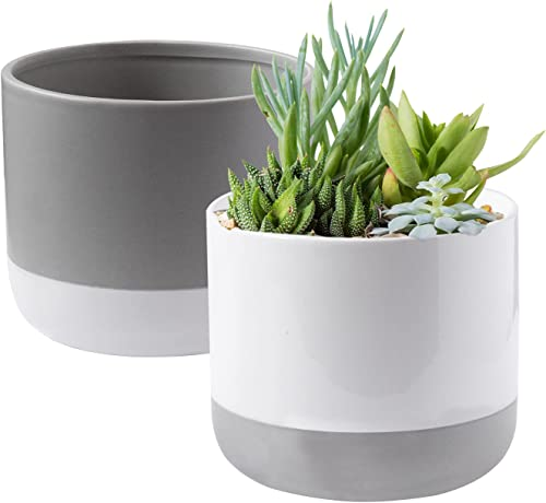 new arrival Royal Imports Flower Pot Ceramic Vase, Matching Decorative Planter outlet sale for Indoor Outdoor Garden Windowsill, with Drainage Hole & Plug, Set of new arrival 2, Grey White outlet online sale